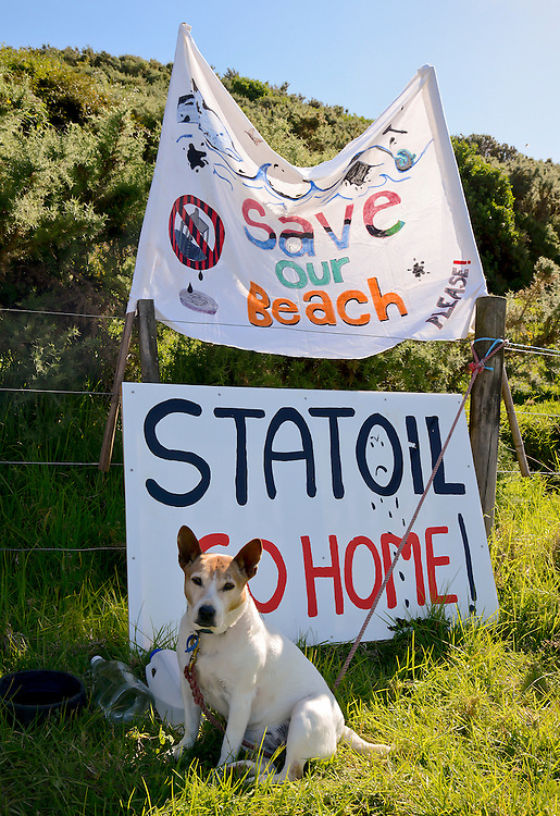 Polly the environmentdal watchdog at a concert at Shipwreck Bay, Ahipara, protesting at Norwegian firm Statoil's deep sea seismic testing off Northland's west coast, Northland, New Zealand, December 06, 2014. Credit:SNPA / Malcolm Pullman