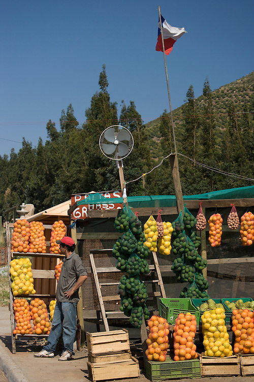 Produce at farmstand,  Maipo Valley, Chile