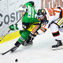 20130217: SLO, Ice Hockey - EBEL League,  HDD Telemach Olimpija vs HC Orli Znojmo