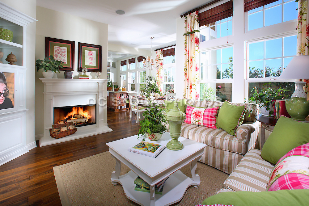Model Home Single Family Residence Living Room