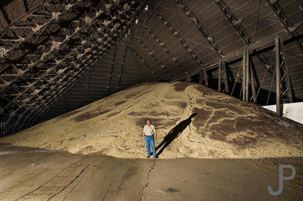 Gene Nuens with Producers Cooperative Oil Mill in downtown OKC stands in front of Canola seed that is awaiting processing at the mill. PCOM uses these same sheds to store cotton seed during the cotton harvest.
