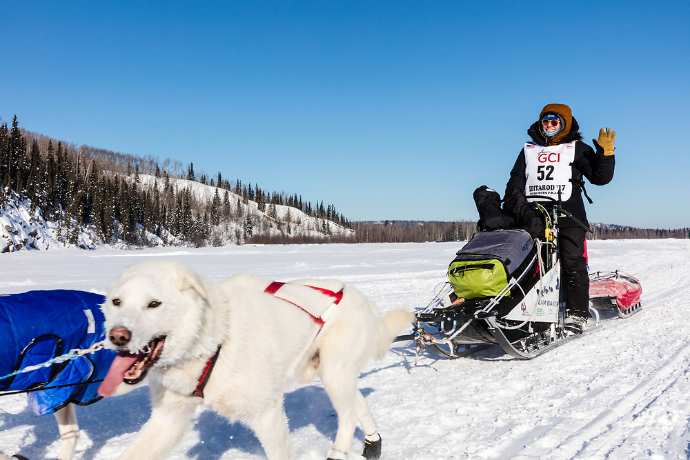 Musher Katherine Keith competing in the 45rd Iditarod Trail Sled Dog Race on the Chena River after leaving the restart in Fairbanks in Interior Alaska.  Afternoon. Winter.