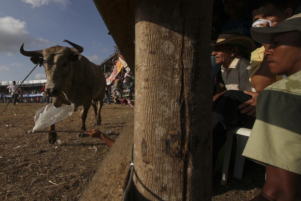 Aficionados asisten a una corraleja en Sincelejo, Sucre, Colombia