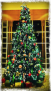 Christmas tree,decorated cellphone photography,Iphone pictures,smartphone pictures