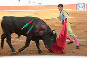 Bullfighter Francisco Martinez thrusts a sword into a bull at the Plaza de Toros March 3, 2018 in San Miguel de Allende, Guanajuato, Mexico.