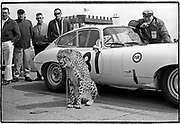 February 17, 1963  •  Daytona 1963 Speed Weeks • entered 2 lightweight Jaguars (#30/#31)  •  #31 driven by Walt Hansgen - disqualified after being pushed by his teammate  •  Augie Pabst, driving #30 finished 10th overall/1st in GT4.0