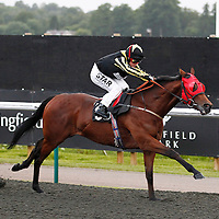 Spirit Of Gondree and Cathy Gannon winning the 8.05 race