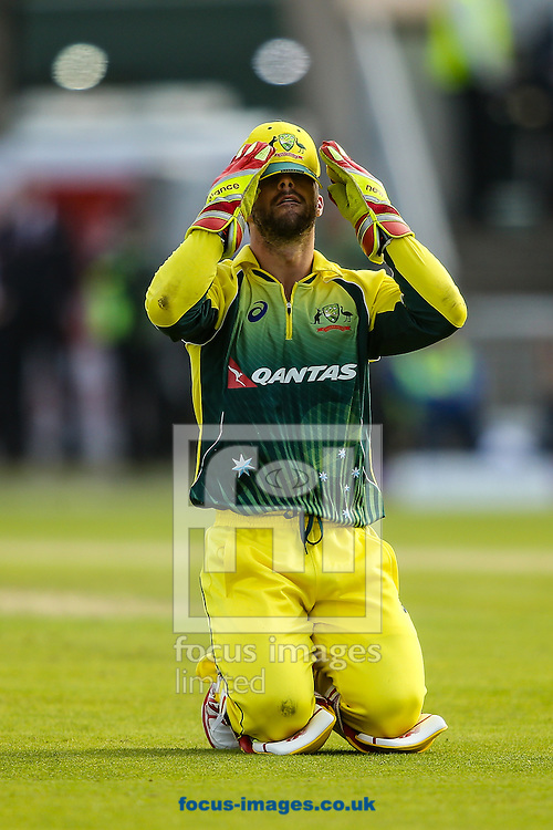 Matthew Wade of Australia despairs as another dismissal chance is missed during the 3rd One Day International match at Old Trafford Cricket Ground, Stretford<br /> Picture by Andy Kearns/Focus Images Ltd 0781 864 4264<br /> 08/09/2015