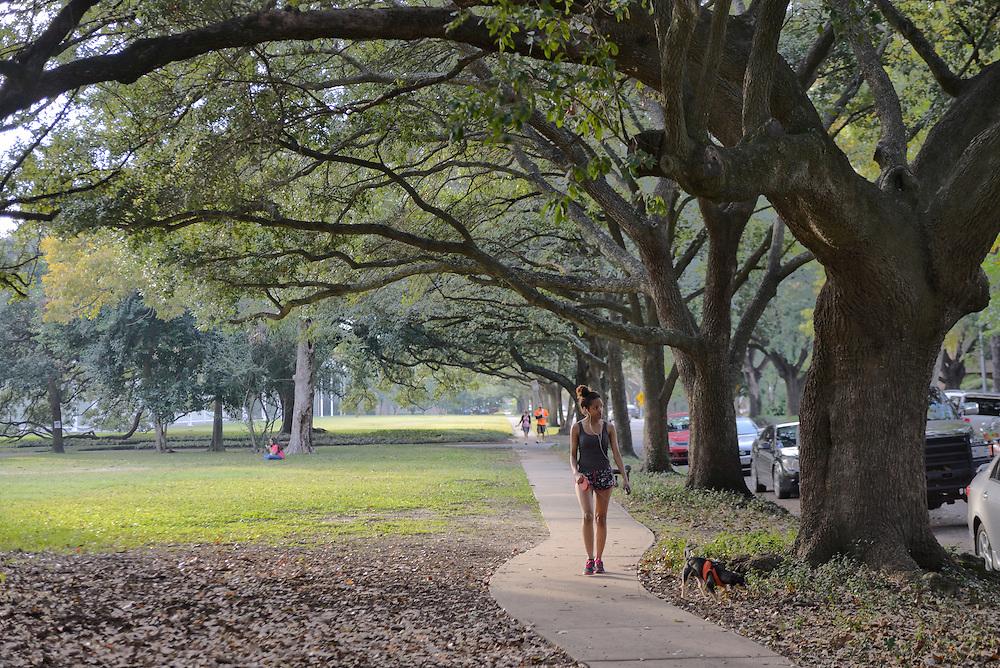 Park outside the The Meril Collection,Houston, Texas,USA
