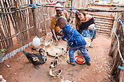 VSO ICS volunteers Francisca Mlingwa and Josie Kearney feeding the family chickens in their host home. Volunteers stay with local families get the full experience. Lindi, Lindi region. Tanzania.