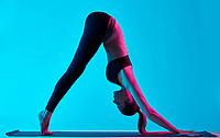one caucasian woman exercising yoga Adho Mukha Svanasana exercices  in silhouette studio isolated on blue background