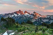The Tatoosh Range from Mazama Ridge in Mount Rainier National Park, Washington State, USA