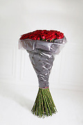 Violets are blue, roses are....how much!<br /> <br /> An online florist has unveiled this year's most extravagant Valentine's bouquet – a bunch of roses costing £10,000.<br />  <br /> These are not just any roses, however. They are grown 2,800 metres above sea level amid the mountains of Ecuador and stand five feet tall.<br />  <br /> For £10,000, you get 1,000 of the blooms, each one with an average of 60 petals that are renowned for their soft, velvety, rounded appearance. <br />  <br /> For good measure, ArenaFlowers.com, the online florist selling the giant-sized bouquet, throws in an iPad and bottle of Louis Roederer Cristal champagne.<br />  <br /> The flowers are part of a range of gifts for Valentine's Day called One of a Kind which launches today.<br /> <br /> Photo shows: 150 of The World's Largest Roses, Cristal & iPad£2,950.00<br /> ©Exclusivepix Media