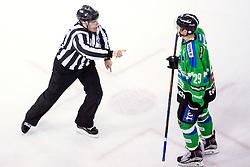 Linesman Damir Rakovic and Anze Ropret of Olimpija during ice hockey match between HDD Telemach Olimpija and HDD SIJ Acroni Jesenice in Final of Slovenian League 2015/2016, on April 11, 2016 in Hala Tivoli, Ljubljana, Slovenia. Photo By Matic Klansek Velej / Sportida