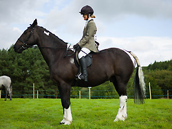 © Licensed to London News Pictures.29/08/15<br /> Bilsdale, UK. <br /> <br /> A rider sits on her horse as she waits to go into the arena for her heat during during the 105th Bilsdale Country Show in North Yorkshire.<br /> <br /> Photo credit : Ian Forsyth/LNP