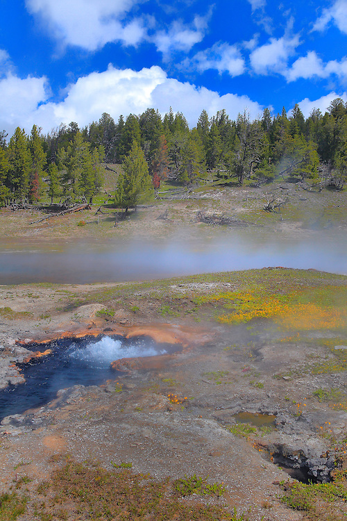 Bubbling Steam Geyser Pool - Yellowstone National Park