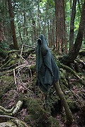 Jacket lies in the undergrowth of Aokigahara Jukai
