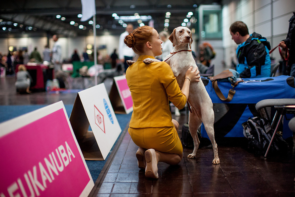 A young woman in a dress is talking to her dog during the ring competition at the Leipzig Trade Fair. Over 31,000 dogs from 73 nations will come together from 8-12 November 2017 in Leipzig for the biggest dog show in the world.