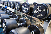Dumbells in a sporting gymnasium for professional footballers