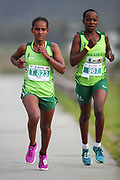 MOSSEL BAY, SOUTH AFRICA - SEPTEMBER 23: Chelitu Asefa of Ethiopia and Loveness Madziva during the PetroSA Marathon hosted by Athletics South Western Districts (SWD) on September 23, 2017 in Mossel Bay, South Africa. (Photo by Roger Sedres/ImageSA)