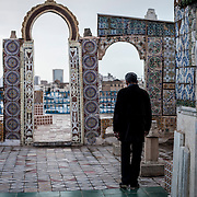 Tunisi, veduta della città dalla terrazza di un'antica casa  della Medina.