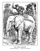 "The White Elephant. ""She goes her Imperial way ..."" - Signor Gayda writing of Italy. (Mussoilni foces a stubborn Abyssinian elephant to go his way with the brute force of his stick)"