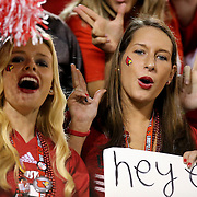 Louisville fans cheer during the NCAA Football Russell Athletic Bowl football game between the Louisville Cardinals and the Miami Hurricanes, at the Florida Citrus Bowl on Saturday, December 28, 2013 in Orlando, Florida. Louisville won the game by a score of 36-9. (AP Photo/Alex Menendez)