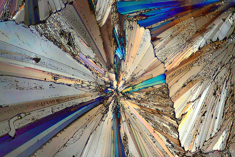 A microscope view of backlit sugar crystals, in polarized light.