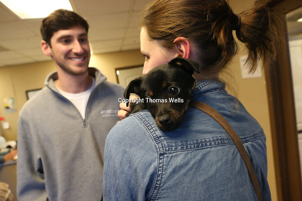Their new puppy doesn't seem to mind no longer being the center of attention after it was one upped by an engagement ring from Zac.