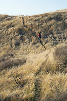 A man hiking on a trail up a grass covered hill in Southeastern Washington USA.