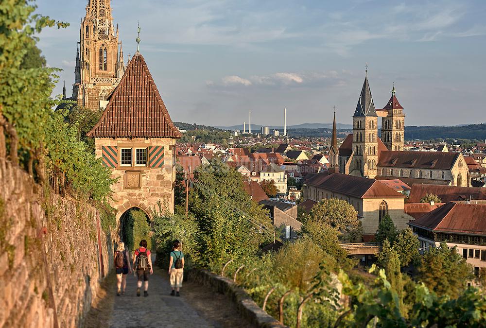 Blick von den Weinbergen beim Neckarhaldentörle auf Esslingen
