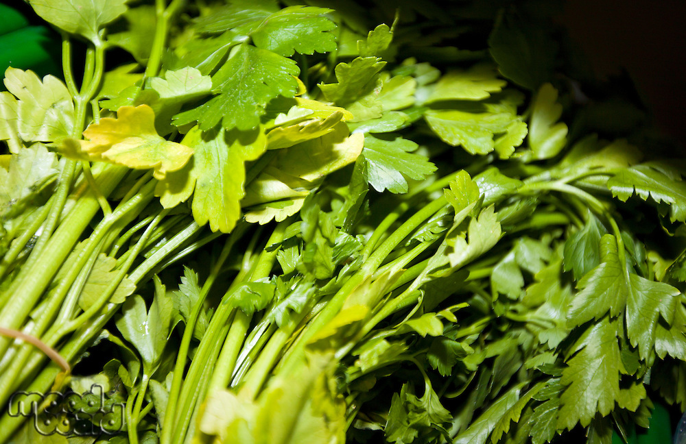 Close-up of fresh parsley leaves in supermarket