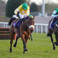 Carole's Destrier and Michael Byrne winning the 2.55 race