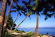Hammock, Mokulea, North Shore, Oahu, Hawaii<br />