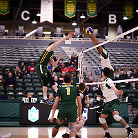 4th year outside hitter Brennan Goski (13) of the Regina Cougars in action during Men's Volleyball home game on November 3 at Centre for Kinesiology, Health and Sport. Credit: Arthur Ward/Arthur Images