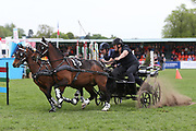 "The ""Scurry"" event entertaining the crowds in the main arena during the International Horse Trials at Chatsworth, Bakewell, United Kingdom on 12 May 2018. Picture by George Franks."