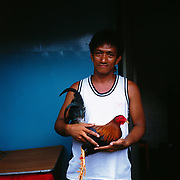 THE PHILIPPINES (Manila). 2009.Armand Tinao, 34, with his game cock before the cockfighting at the La Loma Cockpit,  La Loma, Manila. Photo Tim Clayton <br /> <br /> Cockfighting, or Sabong as it is know in the Philippines is big business, a multi billion dollar industry, overshadowing Basketball as the number one sport in the country. It is estimated over 5 million Roosters will fight in the smalltime pits and full-blown arenas in a calendar year. TV stations are devoted to the sport where fights can be seen every night of the week while The Philippine economy benefits by more than $1 billion a year from breeding farms employment, selling feed and drugs and of course betting on the fights...As one of the worlds oldest spectator sports dating back 6000 years in Persia (now Iran) and first mentioned in fourth century Greek Texts. It is still practiced in many countries today, particularly in south and Central America and parts of Asia. Cockfighting is now illegal in the USA after Louisiana becoming the final state to outlaw cockfighting in August this year. This has led to an influx of American breeders into the Philippines with these breeders supplying most of the best fighting cocks, with prices for quality blood lines selling from PHP 8000 pesos (US $160) to as high as PHP 120,000 Pesos (US $2400)..