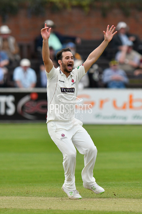 Lewis Gregory of Somerset appeals for a wicket during the Specsavers County Champ Div 1 match between Somerset County Cricket Club and Worcestershire County Cricket Club at the Cooper Associates County Ground, Taunton, United Kingdom on 22 April 2018. Picture by Graham Hunt.