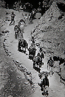 The Mustang expedition team, led by Krishna Lathakah, makes it's way down a narrow path on the way to the Eye Camp in upper Mustang Nepal 1992.