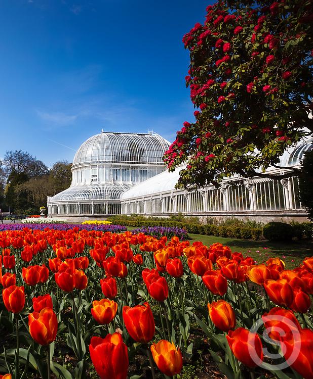 Photographer: Paul Lindsay, Botanic Gardens, Belfast
