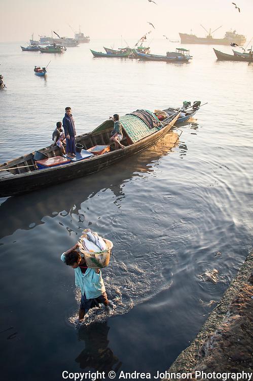 Bumese carrying fresh fish to shore, Sittway fish market, Burma