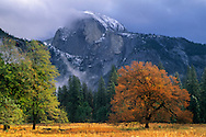 Clearing fall storm over Half Dome from Cooks Meadow, Yosemite Valley, Yosemite National Park, CALIFORNIA