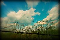 South Eastern Ohio Landscape imsge for sale