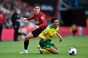 Harry Wilson (22) of AFC Bournemouth fouls Jamal Lewis (12) of Norwich City during the Premier League match between Bournemouth and Norwich City at the Vitality Stadium, Bournemouth, England on 19 October 2019.