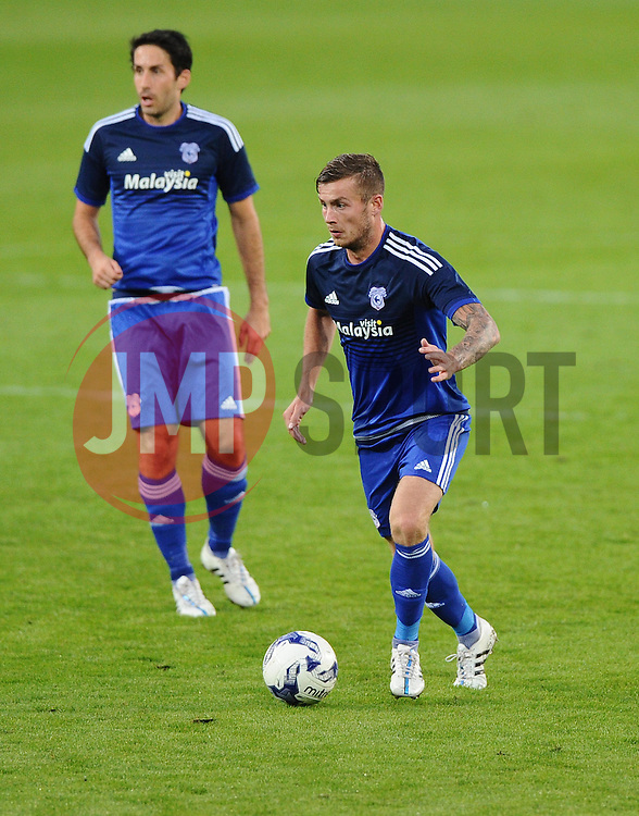 Joe Ralls of Cardiff City (right) and Peter Whittingham of Cardiff City (left)  - Mandatory by-line: Joe Meredith/JMP - 07966386802 - 28/07/2015 - SPORT - FOOTBALL - Cardiff,Wales - Cardiff City Stadium - Cardiff City v Watford - Pre-Season Friendly