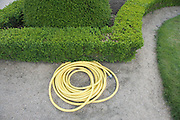 rolled up garden hose laying on the ground in a garden