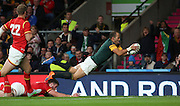 South Africa's Fourie du Preez (Captain) scoring a try to take the score 23 - 19 during the Rugby World Cup Quarter Final match between South Africa and Wales at Twickenham, Richmond, United Kingdom on 17 October 2015. Photo by Matthew Redman.
