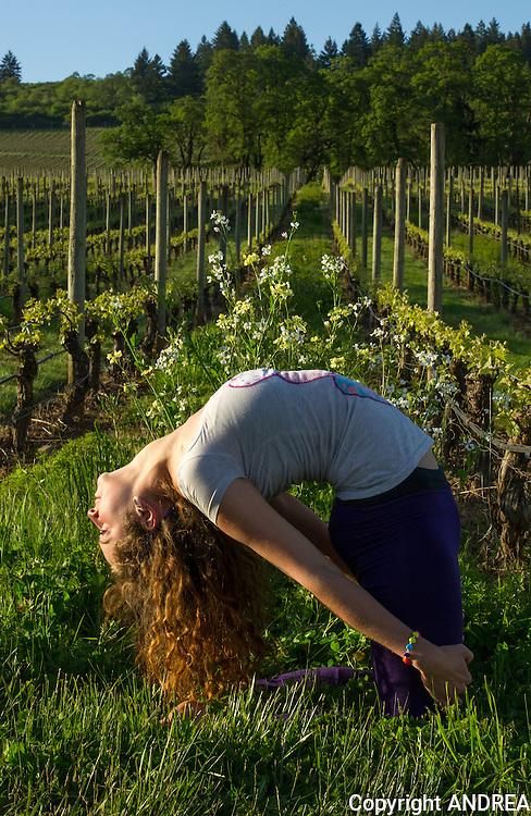 Yoga in the Vineyard, Stoller vineyards, Dundee Hills, Oregon