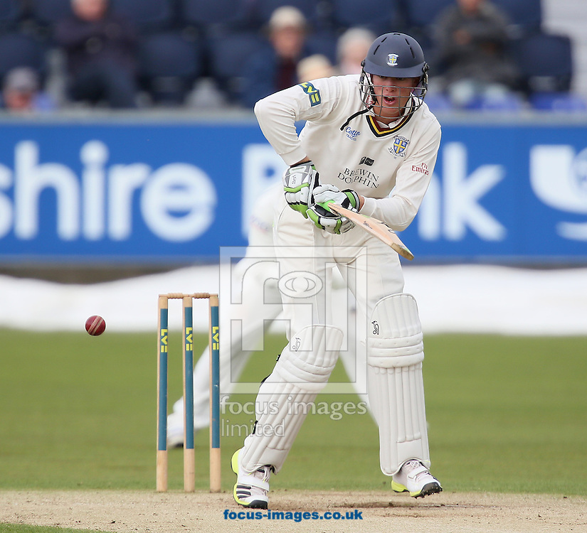 Picture by Paul Gaythorpe/Focus Images Ltd +447771 871632<br /> 19/09/2013<br /> Keaton Jennings of Durham County Cricket Club batting against Nottinghamshire County Cricket Club during the LV County Championship Div One match at Emirates Durham ICG, Chester-le-Street.