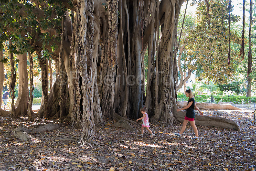 "The public parks in Palermo are called ""Villa"", Villa Marina has secular trees."